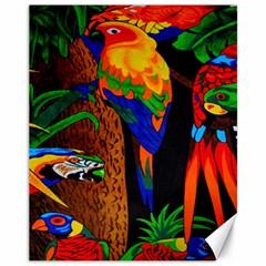 Parrots Aras Lori Parakeet Birds Canvas 11  x 14