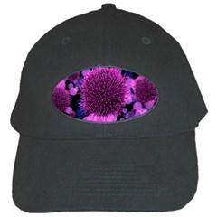 Hintergrund Tapete Keime Viren Black Cap