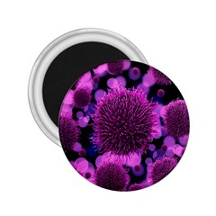 Hintergrund Tapete Keime Viren 2 25  Magnets