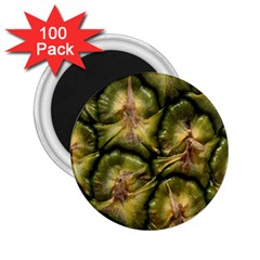 Pineapple Fruit Close Up Macro 2.25  Magnets (100 pack)