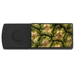 Pineapple Fruit Close Up Macro USB Flash Drive Rectangular (1 GB)