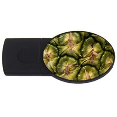 Pineapple Fruit Close Up Macro Usb Flash Drive Oval (4 Gb)