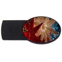 Poinsettia Red Blue White USB Flash Drive Oval (4 GB)