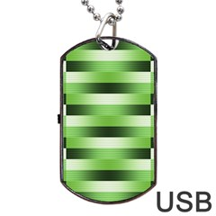 Pinstripes Green Shapes Shades Dog Tag USB Flash (Two Sides)