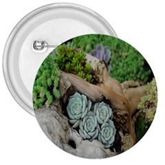 Plant Succulent Plants Flower Wood 3  Buttons