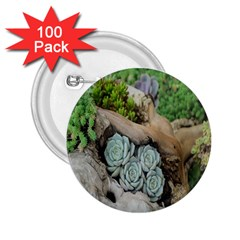 Plant Succulent Plants Flower Wood 2.25  Buttons (100 pack)