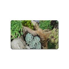 Plant Succulent Plants Flower Wood Magnet (Name Card)