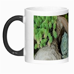 Plant Succulent Plants Flower Wood Morph Mugs