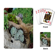 Plant Succulent Plants Flower Wood Playing Card