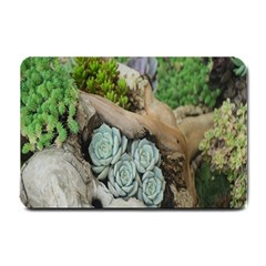 Plant Succulent Plants Flower Wood Small Doormat