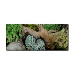 Plant Succulent Plants Flower Wood Cosmetic Storage Cases