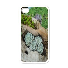 Plant Succulent Plants Flower Wood Apple iPhone 4 Case (White)