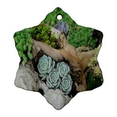 Plant Succulent Plants Flower Wood Ornament (snowflake)