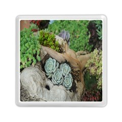 Plant Succulent Plants Flower Wood Memory Card Reader (Square)