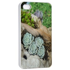 Plant Succulent Plants Flower Wood Apple iPhone 4/4s Seamless Case (White)