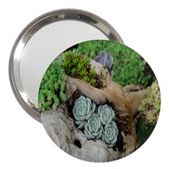 Plant Succulent Plants Flower Wood 3  Handbag Mirrors
