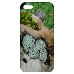 Plant Succulent Plants Flower Wood Apple Iphone 5 Hardshell Case