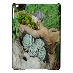 Plant Succulent Plants Flower Wood Ipad Air Hardshell Cases