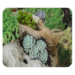 Plant Succulent Plants Flower Wood Double Sided Flano Blanket (Small)