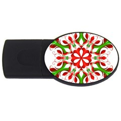 Red And Green Snowflake USB Flash Drive Oval (1 GB)