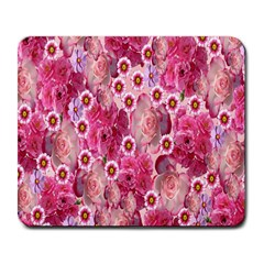 Roses Flowers Rose Blooms Nature Large Mousepads