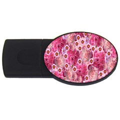 Roses Flowers Rose Blooms Nature USB Flash Drive Oval (1 GB)