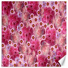Roses Flowers Rose Blooms Nature Canvas 12  x 12