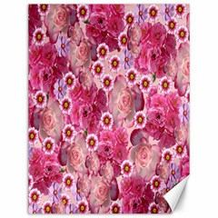 Roses Flowers Rose Blooms Nature Canvas 12  x 16