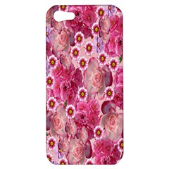 Roses Flowers Rose Blooms Nature Apple Iphone 5 Hardshell Case