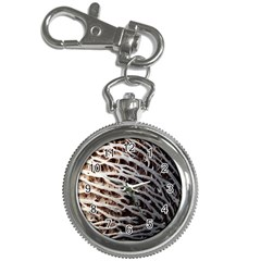 Seed Worn Lines Close Macro Key Chain Watches