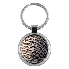 Seed Worn Lines Close Macro Key Chains (round)