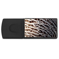 Seed Worn Lines Close Macro USB Flash Drive Rectangular (1 GB)