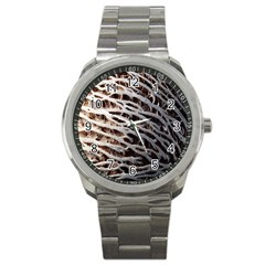 Seed Worn Lines Close Macro Sport Metal Watch