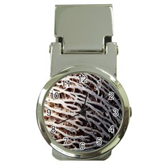 Seed Worn Lines Close Macro Money Clip Watches