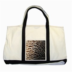 Seed Worn Lines Close Macro Two Tone Tote Bag