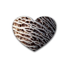 Seed Worn Lines Close Macro Heart Coaster (4 pack)