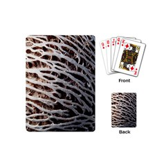 Seed Worn Lines Close Macro Playing Cards (Mini)