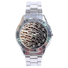 Seed Worn Lines Close Macro Stainless Steel Analogue Watch