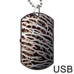 Seed Worn Lines Close Macro Dog Tag Usb Flash (two Sides)