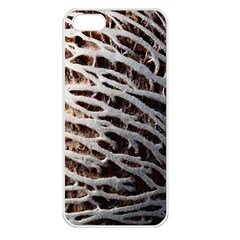 Seed Worn Lines Close Macro Apple iPhone 5 Seamless Case (White)
