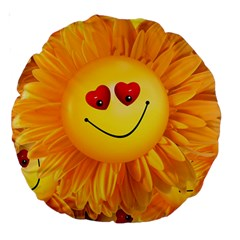Smiley Joy Heart Love Smile Large 18  Premium Round Cushions