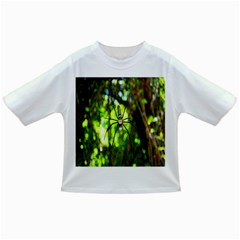 Spider Spiders Web Spider Web Infant/Toddler T-Shirts