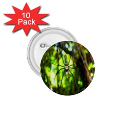 Spider Spiders Web Spider Web 1.75  Buttons (10 pack)