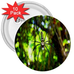 Spider Spiders Web Spider Web 3  Buttons (10 pack)