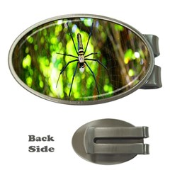 Spider Spiders Web Spider Web Money Clips (Oval)