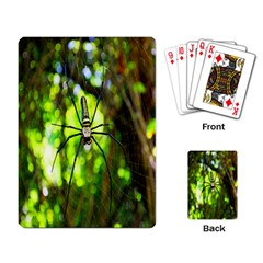 Spider Spiders Web Spider Web Playing Card