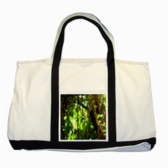 Spider Spiders Web Spider Web Two Tone Tote Bag