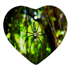 Spider Spiders Web Spider Web Heart Ornament (two Sides)