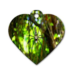 Spider Spiders Web Spider Web Dog Tag Heart (One Side)