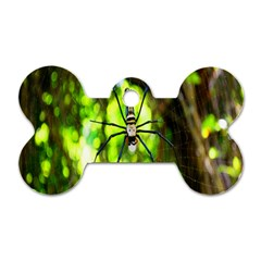 Spider Spiders Web Spider Web Dog Tag Bone (two Sides)